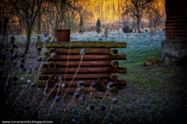 1-mlynskie-stawy-fotografia-namyslow-107