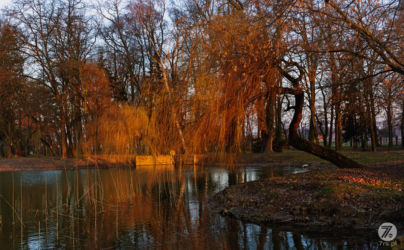 Woskowice-palac-namyslow-fotografia-opole-111