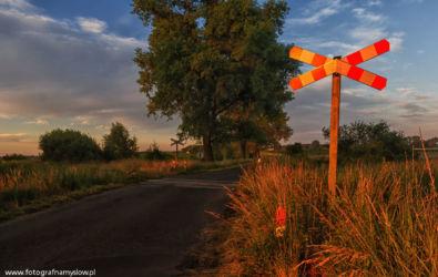 Ziemielowice-fotografia-namyslow-102