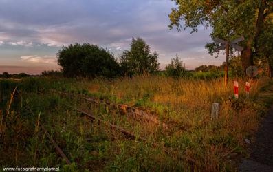 Ziemielowice-fotografia-namyslow-104