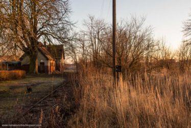 bukowa-stacja-kolejowa-104