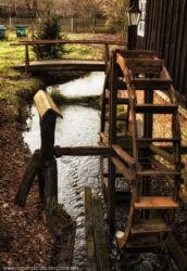 mlynskie-stawy-fotografia-namyslow-100