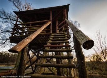 mlynskie-stawy-fotografia-namyslow-104