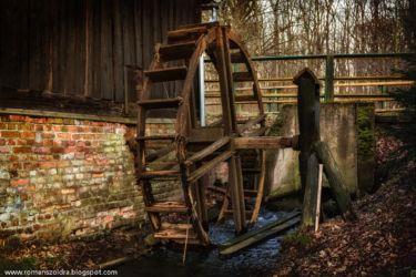 mlynskie-stawy-fotografia-namyslow-108