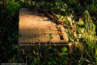 namyslow-cmentarz-poniemiecki-103