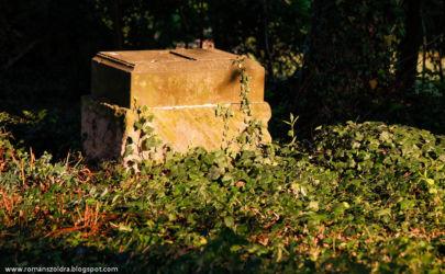 namyslow-cmentarz-poniemiecki-104
