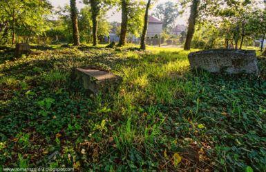 namyslow-cmentarz-poniemiecki-107
