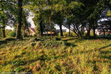namyslow-cmentarz-poniemiecki-108