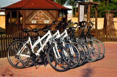 turystyka-namyslow-wypozyczalnia-rowerow-203