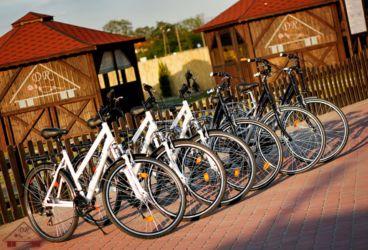 turystyka-namyslow-wypozyczalnia-rowerow-206