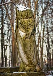 zabytkowy-park-pokoj-2011-fotografia-opole-103